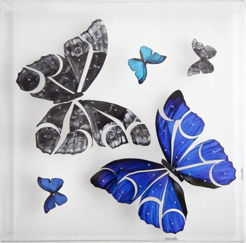Lineas suspendidas mariposas